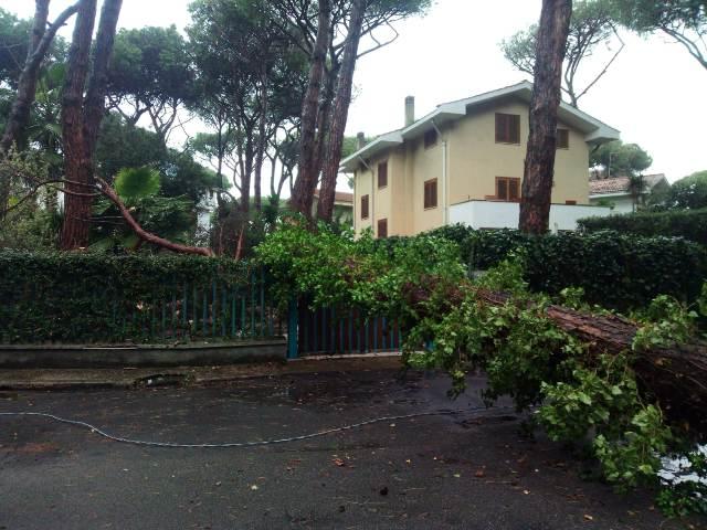 Pino-caduto-via-Mairori-4-k-danni-villa