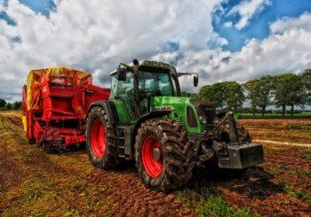 """Agricoltura, Califano: """"3,2 milioni per sostenere il lavoro"""""""