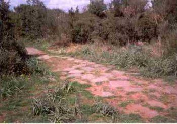 A Palo con Natura 2000