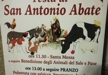 Testa di Lepre, Festa di Sant'Antonio il 20 gennaio
