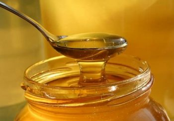 Senza miele d'eucaliptus