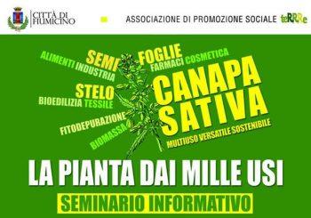 Coltivare canapa a Fiumicino, seminario il 16 febbraio