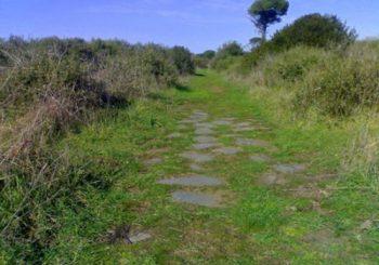 Visite con Natura 2000