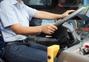CdZ Aranova: la navetta circolare con minibus ad Aranova?