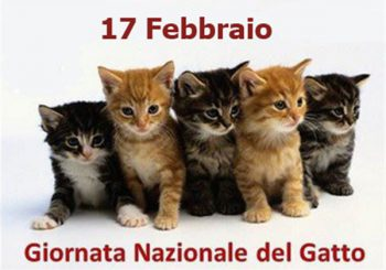 Fiumicino, Festa nazionale del Gatto il 17 febbraio