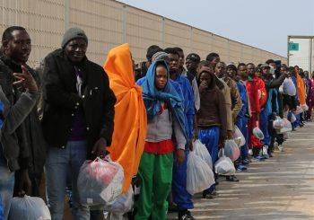 Baccini: Fiumicino allo stremo, no ai profughi