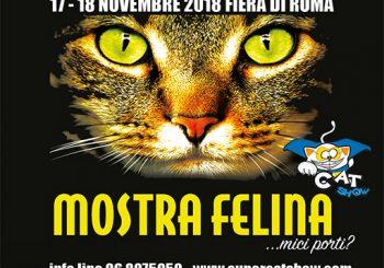Fiera di Roma, Supercatshow il 17-18 novembre