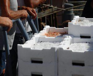Mercato del pesce, nel nuovo bando anche street food
