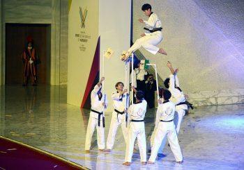 Esibizione unica di taekwondo a Roma