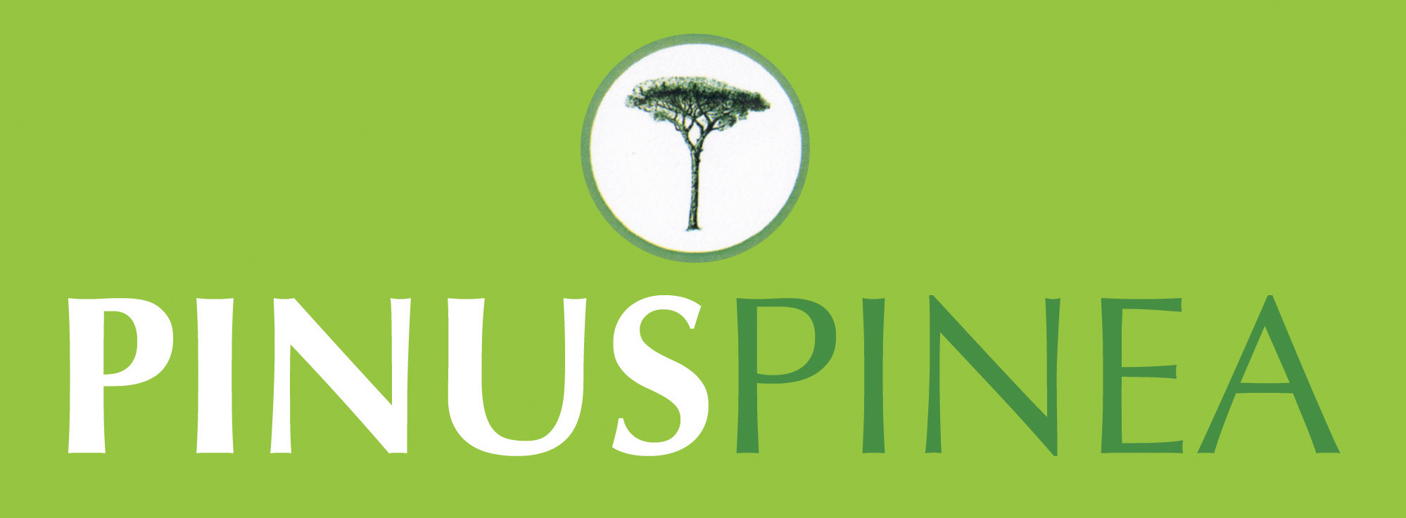 logo2-pinus-pinea